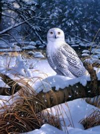 Diamond painting prachtige sneeuw uil (60x45cm)(full)