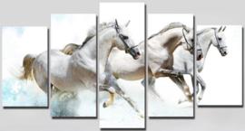 Diamond painting paarden (5 luiken)(2x15x20cm)(2x15x30cm)(1x15x40cm)(full)