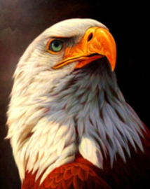 Diamond painting vogel (25x25cm)