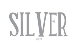 Siser flex Silver 20 x 25 cm