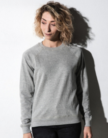 Dames Raglan Sweater Sport Grey