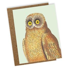 WENSKAART 'MELLOW OWL'