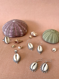 COWRIE SHELL RING STERLING ZILVER / KAURI