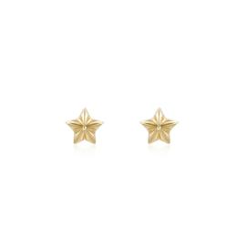 STAR STUDS GOLD VERMEIL