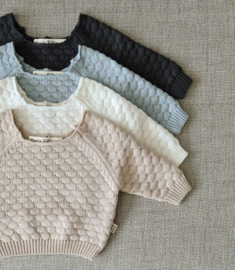Knitted Sweater - Cotton - Misty Blue