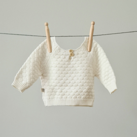 Knitted Sweater - Cotton - Ivory