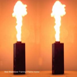 Flame master per set van 2