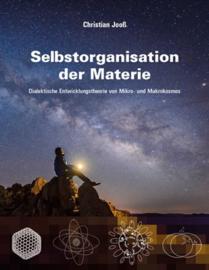 Selbstorganisation der Materie - schrijver: Christian Jooss
