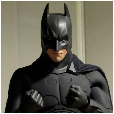 Batman Begins 45 cm Schaalmodel