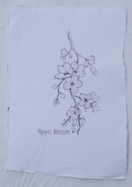 Kaart A5- Apple  Blossom