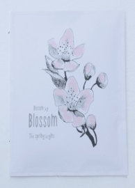 Geursachet Craft A4 Blossom by blossom the spring begins