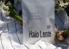 Geursachet Craft wit Hallo Lente