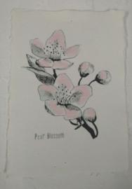 Kaart A5- Pear Blossom