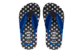 Blauwe slipper Zebra