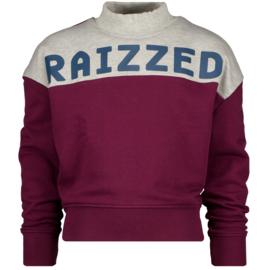 Bordeaux Sweater Raizzed NIEUWE COLLECTIE
