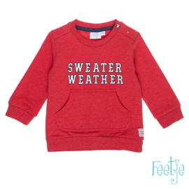 Rode sweater Feetje