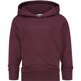 """Bordeaux hoodie """"New Castle"""" Raizzed"""