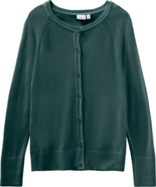 Groen vest Name it NIEUWE COLLECTIE