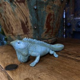 Hagedis 20cm lang, 5 cm breed