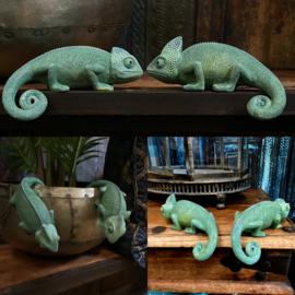 Set van twee leuke groene kameleons