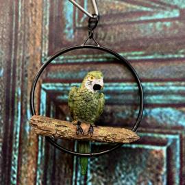 Schattige kleine groene papegaai in ring 10 x 3,5 x 13cm