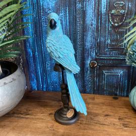 Turquoise papegaai 41cm hoog