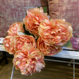 Bos roze/zalm pioenrozen met 7 bloemen