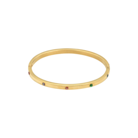 Bangle - Multicolour stones - RVS gold