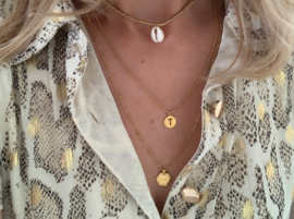 Necklace fine - Love - RVS silver/ gold