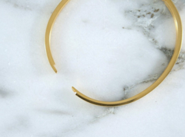 Bangle - Clover - RVS silver/gold
