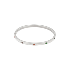 Bangle - Multicolour stones - RVS silver