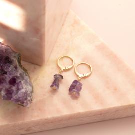 Jewelry in a Bottle - earrings Amethist - gold plated