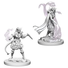 Female Tiefling Sorcerer