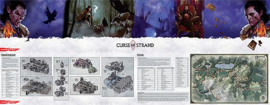 Dungeon Master Screen Curse of Strahd