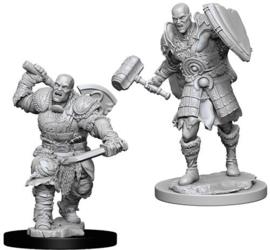 Male Goliath Fighter