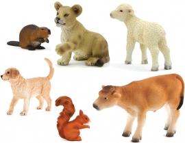 Diverse Dieren