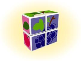 Geomag Fruit