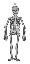 Kartonnen Skelet 120cm