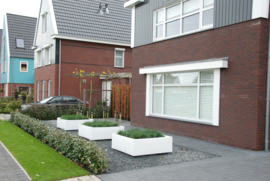 POLYESTER VIERKANT 'BUXUS'