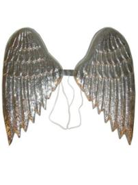 Vleugels zilverkleur