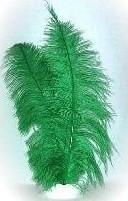 Pietenveer groen
