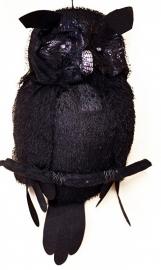 Zwarte uil
