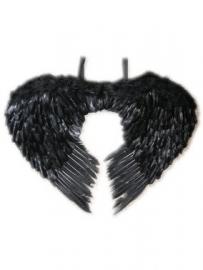 Vleugels zwart