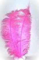 Pietenveer roze