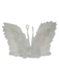 Engelen vleugels kind