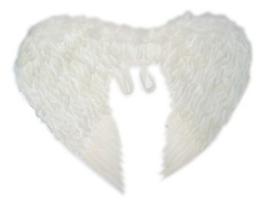Vleugels wit