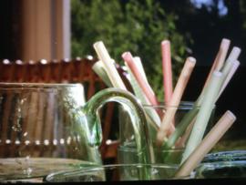 By Lille Vilde rietjes, zes stuks met schoonmaakborstel, kleur Sunrise