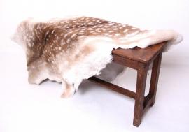 Damhertenvacht Oh Deer