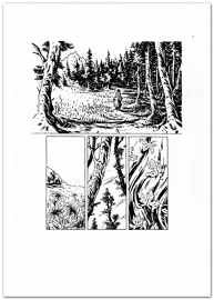 Tara pagina 14 (A4)