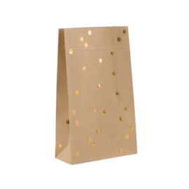 Blokbodem zakjes gouden stip • 15x6x24